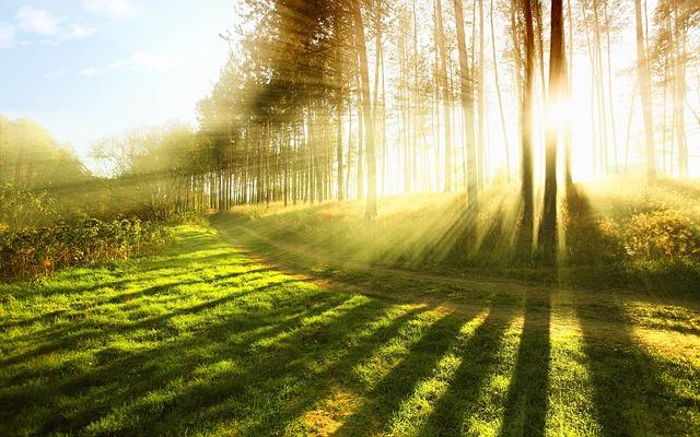 Vitamin D Mangel – Zu wenig Sonne abbekommen?