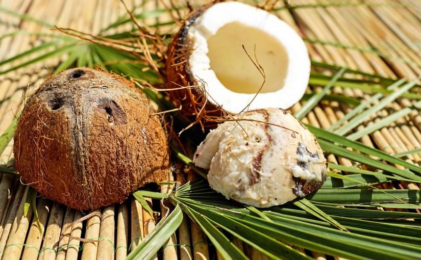 Kokos Pralinen selbst gemacht